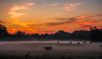 beautiful dreamy sunrise on the farm land in the country photo