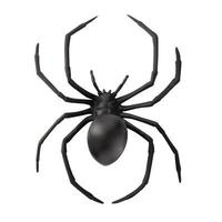 Fake rubber spider toy isolated over a white background photo