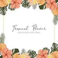 watercolor summer tropical hibiscus flower square frame vector