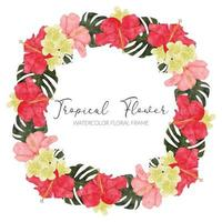 watercolor tropical hibiscus flower wreath frame vector