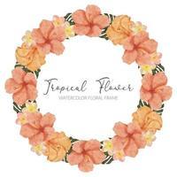 watercolor summer tropical hibiscus flower wreath frame vector