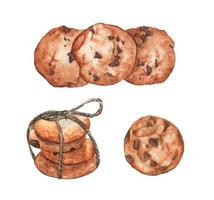 Set of cookies with chocolate. Watercolor illustration. vector