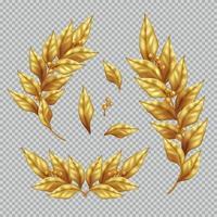 Ramas de laurel dorado y hojas ilustración vectorial vector