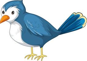 A blue bird in standing pose in cartoon style isolated vector