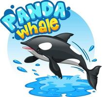 Orca or Killer Whale cartoon character with Panda Whale font banner vector