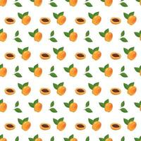 Seamless print with apricots, seeds and leaves vector