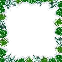 Green frame with palm leaves, shadow and white blank space vector