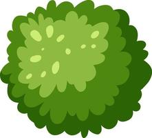 Aerial view of a green bush isolated on white background vector