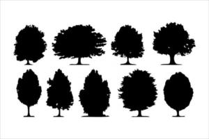 Isolated forest trees on white background vector