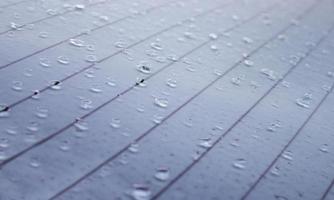 Detalle de la superficie mojada por la lluvia foto