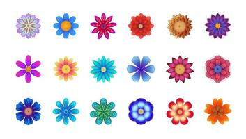 Vector floral set, colorful flowers on white background, different flowers collection, beautiful assorted flowers