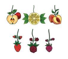 Vector fruit set, berries, Apple, Lemon, Peach collection