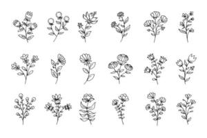 Vector set of flowers, black line art flowers