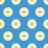 Summer Seamless Pattern with Chamomile Flowers vector