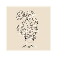 Hand drawn illustration of plant monstera for posters, cards vector