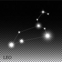 Leo Zodiac Sign of the Beautiful Bright Stars Vector Illustration