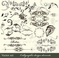 Calligraphic page decoration design vector