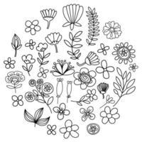 Doodle floral elements for design vector