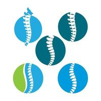 Spine logo images vector