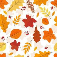 Autumn leafs with red berry seamless background. vector