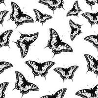 Butterfly Seamless Pattern Background Vector Illustration