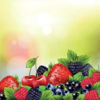 Realistic Berries Blurred Background Vector Illustration