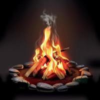 Burning Wood Campfire Vector Illustration