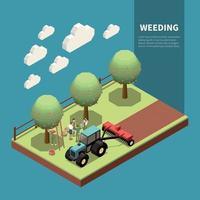Weeding Isometric Composition Vector Illustration