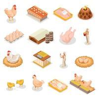 Isometric Chicken Icon Set Vector Illustration
