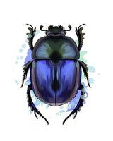 Scarab beetle from a splash of watercolor, colored drawing, realistic. Vector illustration of paints