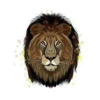 Lion head portrait from a splash of watercolor, colored drawing, realistic. Vector illustration of paints