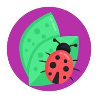 Crop Bug and Insect vector