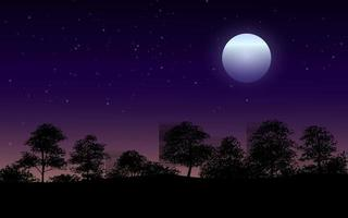 Beautiful Night In Forest Illustration vector
