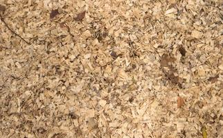 Wood chips texture, natural floor covering background photo