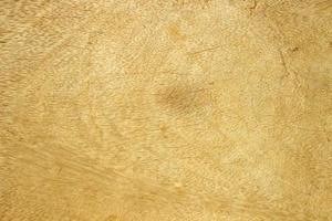 Yellow wood abstract texture background photo