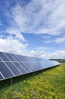 Solar Power Station on the spring flowering Meadow photo