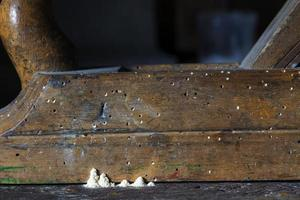 Chiaroscuro Still life with the beading Plane and the Wood-worms photo