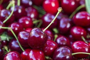 Summer harvest of red Cherries photo