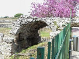archaeological excavations of paestum naples photo