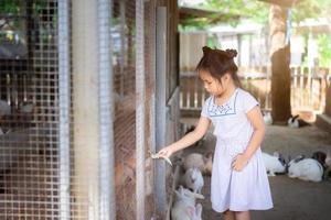 Cute little asian girl feeding rabbit on the farm photo