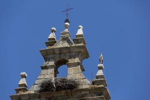 Cigüeña en la parte superior del campanario de la iglesia de Cacabelos, provincia de León, Castilla y León, España foto