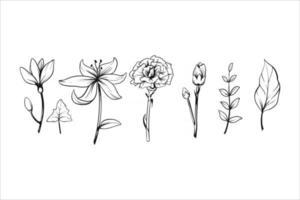 set of flower vector