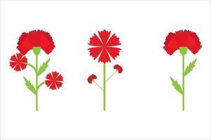 carnation flower vector eps 10