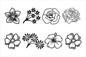 flower blossom set vector