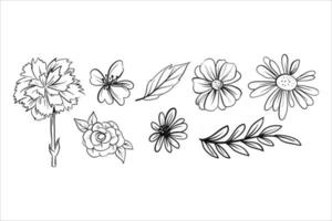 collection of flower vector