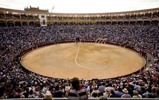 Madrid, Spain, 2021 - Bullfighting in the bullring photo