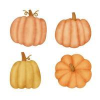 Hand drawn watercolor pumpkins set vector