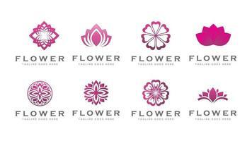 purple flower lotus logo vector template
