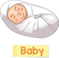 Educational English word card of Baby vector