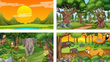 Set of different forest horizontal scene with various wild animals vector